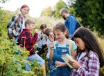 Fast 15.000 Schüler in der Sommerschule