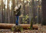 Der sächsische Wald kommt in den Hort